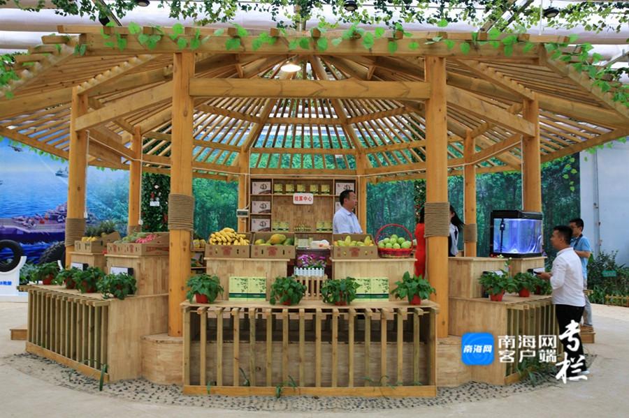 走进桂林洋国家热带农业公园 饱览科技展区美丽风光